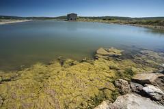 27082018croazia-_DSC6465 (veronesi.roberto) Tags: pira slovenia sea mare holiday travel landscapes