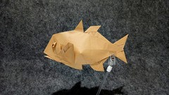 Giant Trevally (guangxu233) Tags: fish art fold paper paperart paperfolding handmade hobby animal origami origamiart 折纸 折り紙 折り紙作品 model
