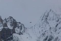 Schowflug über Kandersteg (Nice Day) Tags: kandersteg flugzeug schweiz winterberge
