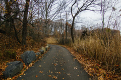 🚶 Walking the Trail 🚶♀️ (0sire) Tags: path trail fall autumn park oaklandlakepark queens nyc newyorkcity trees overcast cloudy