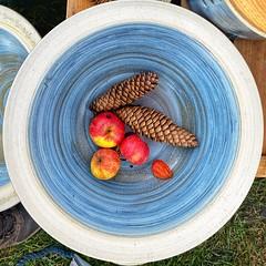 Äpfel an Zapfen (dirklie65) Tags: tannenzapfen keramik schale äpfel colors farben quadrat mecklenburgvorpommern mvp klempenow