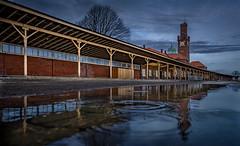 Cuxhaven im Spiegel der Zeit ... (Roger Armutat) Tags: cuxhaven steubenhöft spiegelung wasser pfütze sony sonya7ii norddeutschland hafen hamburgamerikahafen
