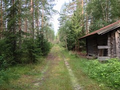 """""""Into the Deep Forest"""" (Seppo53) Tags: summer tree road grass forest barn finland ostrobothnia kauhajoki forestroad sky sunny"""