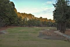 Mid Pines #17 from tee 592 (tewiespix) Tags: midpines southernpines pinehurst northcarolina donaldross chrisfranz golfcourse kyle franz