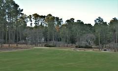 Mid Pines #16 g pitch to green 591 (tewiespix) Tags: midpines southernpines pinehurst northcarolina donaldross chrisfranz golfcourse kyle franz