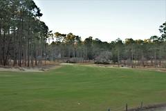 Mid Pines #16 g approach 590 (tewiespix) Tags: midpines southernpines pinehurst northcarolina donaldross chrisfranz golfcourse kyle franz