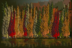 Colores de otoño (Amparo Higón) Tags: coloresdeotoño otoño fall autumncolours árboles trees bosque forest digitalart digitalpainting vectorart modernart modernekunst kunst art arte amparohigón