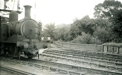Image00094 (OldRailPics) Tags: steam locomotive british railways isle wight