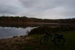 Am Kelmetschweiher (Lutz Blohm) Tags: kelmetschweiher schifferstadt pfälzerwald naturfoto fahrradtour stevensp18 pinionp118getriebe waldsee wald natur fe28mmf2 sonyalpha7rm4
