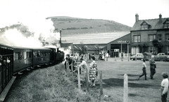 Image00134 (OldRailPics) Tags: steam locomotive vale rheidol railway