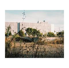 #0261 (Masami H.) Tags: 6x7 film analog mediumformat pentax67 kodakportra160 landscape