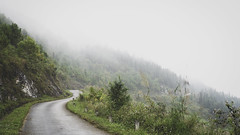 The Slope (BRAVEN.NGUYEN) Tags: landscape nature tree moutain hill fog cold