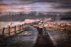 Bike Ride On A Cold Morning (jarr1520) Tags: landscape sunrise clouds morning cold water lake light art path birds boy bike grass frost shadows textured