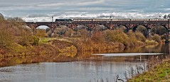 dutton (midcheshireman) Tags: steam train locomotive cheshire mainline river weaver royalscot 46100