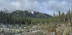 Seen From Smith Dorrien Trail / Alberta 742 (Bernie Emmons) Tags: canmore mountains creek trees snow clouds iphone kananaskis canada