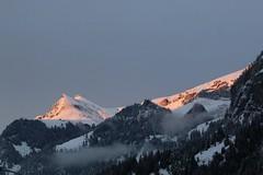 Alpenglühen im Winter (Nice Day) Tags: kandersteg sonnenuntergang winter schnee