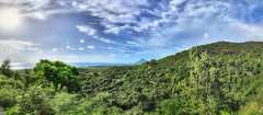 MAURITIUS Chamarel VI (stega60) Tags: mauritius ilemaurice chamarel panorama hdr stiched indian ocean island ile green blue sky nuages clouds stega60 trees arbres arboles sun soleil sol