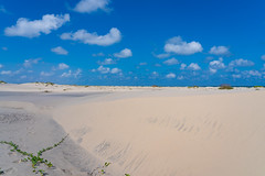 SouthPadreIsland_316 (allen ramlow) Tags: south padre island texas north sand dunes landscape sony alpha sky clouds