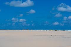 SouthPadreIsland_313 (allen ramlow) Tags: south padre island texas north sand dunes landscape sony alpha sky clouds