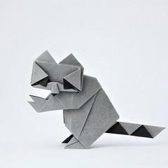 Raccoon - Oriol Esteve (pierreyvesgallard) Tags: origami raccoon oriol esteve mapache animal paper papercraft geometic cartoon