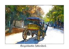 Faytonlar Büyükada İstanbul (recepmemik) Tags: büyükada istanbul türkiye turkey suluboya watercolor painting recepmemik