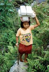 working (geneward2) Tags: girl head bali bricks carry stick child work asia