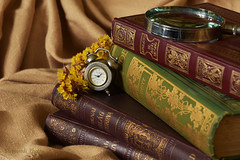 Still life (Szemeredi Photos/ clevernails) Tags: stilllife book clock flower lupe cloth composition closeup