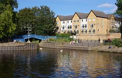 IMGP0757 (mattbuck4950) Tags: england unitedkingdom europe bridges water holidays september rivers yorkshire york riverouse riverfoss camerapentaxk70 lenssigma18300mm 2019 holiday2019yorkshire