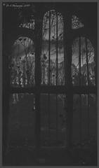 A Dark View DSC_4286 (dark-dave) Tags: tomb insidetomb ayton cemetery scotland adarkview chill mysterious