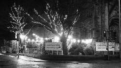 Christmas Trees For Sale 02 (byronv2) Tags: blackandwhite blackwhite bw monochrome night nuit nacht edinburgh edinburghbynight edimbourg scotland wet raining weather winter holycorner bruntsfield morningside church christmas christmastree tree lights decoration christmasdecorations