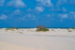 SouthPadreIsland_321 (allen ramlow) Tags: south padre island texas north sand dunes landscape sony alpha sky clouds