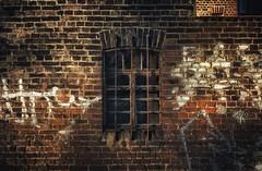 Windows (hobbit68) Tags: fujifilm xt2 windows fenster lostplaces old alt verlassen lost gitter graffiti backstein house hobbyfotograf häuser wand wall hauswand