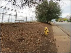 g9957 Metal detecting site (FolsomNatural) Tags: metaldetector finds sites school folsom california
