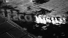 Wet Reflections (byronv2) Tags: blackandwhite blackwhite bw monochrome night nuit nacht edinburgh edinburghbynight edimbourg scotland wet raining weather winter holycorner bruntsfield puddle water reflection sign pavement