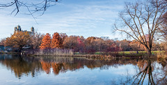 Turtle Pond Reflections (CVerwaal) Tags: autumn centralpark turtlepond reflections beresford fujifilmx100t