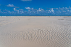 SouthPadreIsland_308 (allen ramlow) Tags: south padre island texas north sand dunes landscape sony alpha sky clouds