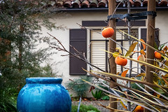 Alameda (gwashley) Tags: california alameda city ilovealameda