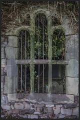 Tomb DSC_4282 (dark-dave) Tags: tomb window bars graveyard ayton scotland scottishborders holy