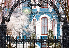 City in Winter (Karen_Chappell) Tags: winter snow snowing snowy snowfall stjohns canada canonef24105mmf4lisusm eastcoast avalonpeninsula atlanticcanada house home blue window trim wood wooden paint painted red white clapboard jellybeanrow rowhouse city urban december arch fence iron trees weather downtown black building