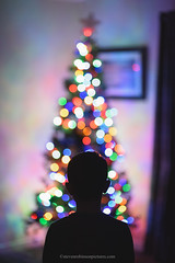Christmas Tree Lights (Steven Robinson Pictures) Tags: boy christmas christmasdecoration bokeh bokehball child innocence season indoors cute portrait nikond810 shallowdepthoffield christmastree 85mmf14dnikkor