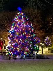 12-5-2019: First lighting of Boston