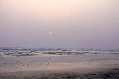 Yes, Beach ! (QueeN CooL) Tags: beach sea sunset cloudy overcast karachi view coast bird waves sand seaside love nature pakistan nobicool photography seascape sky