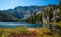 TJ Lake (San Francisco Gal) Tags: tjlake sierranevada mammothlakes lake water mountain vegetation tree autumn 2019 easternsierra cliff escarpment