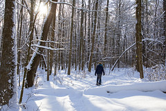 Snow Heaven (Matt Champlin) Tags: stephanie steph snowshoe snowshoeing life outdoors winter cold snow snowy fun love woods woodland skaneateles home sca canon 2019