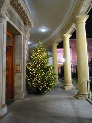 National Library of Ireland (sam2cents) Tags: nationallibraryofireland kildarestreet dublin ireland christmas christmastree