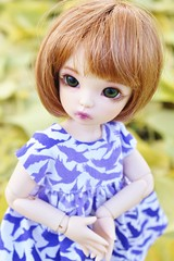 Tamsin in the Wild (AluminumDryad) Tags: fairyland littlefee ltf ante tinybjd bjd balljointeddoll doll resin ginkgo leaves yellow foliage purple birds
