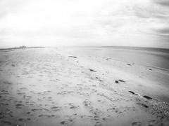 (seanlewis) Tags: puertopeñasco mexico beach sand water bajacaliforniasur blackandwhite bw clouds sky