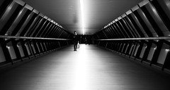 #CanaryWharf PhotoCredit #CashinoNDT #CNDTPhotography #London (cashino) Tags: cndtphotogrphy canarywharf canon6d canon teamcanon photography nighttimephotography fullframedslr steelwool