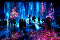 20191129-49-TeamLAB Borderless exhibition (Roger T Wong) Tags: 2019 asia japan rogertwong sel24105g sony24105 sonya7iii sonyalpha7iii sonyfe24105mmf4goss sonyilce7m3 teamlab teamlabborderlelss tokyo art digitalart graphics lights museum travel
