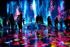 20191129-50-TeamLAB Borderless exhibition (Roger T Wong) Tags: 2019 asia japan rogertwong sel24105g sony24105 sonya7iii sonyalpha7iii sonyfe24105mmf4goss sonyilce7m3 teamlab teamlabborderlelss tokyo art digitalart graphics lights museum travel